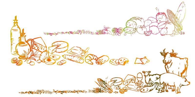 Illustrations MangeZen(agrandir l'image)